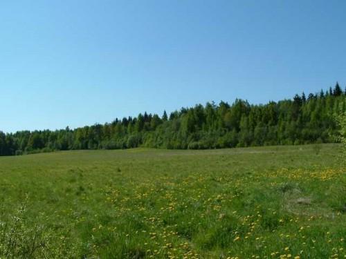 По новому Земельному кодексу государство может изымать частные земли без суда и следствия