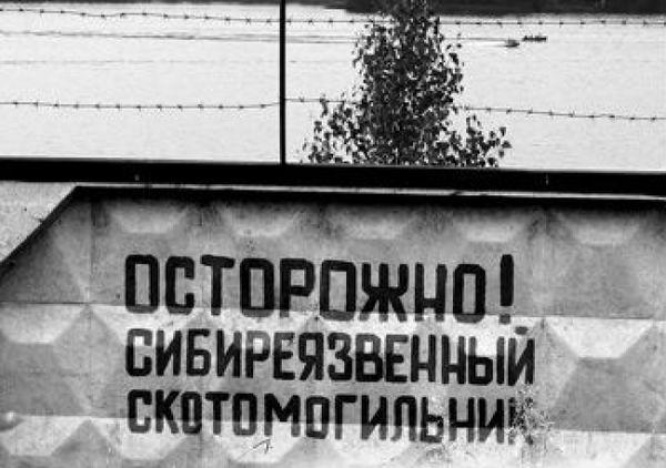 Путин созывает Совбез из-за угроз в условиях санкций - Цензор.НЕТ 3518