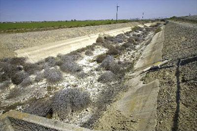 California Man Made Drought