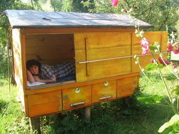 """12 ульев"""":белорусский пасечник долго считал самым надёжным сейфом пчелиный домик Новости Ру - информационное бюро"""