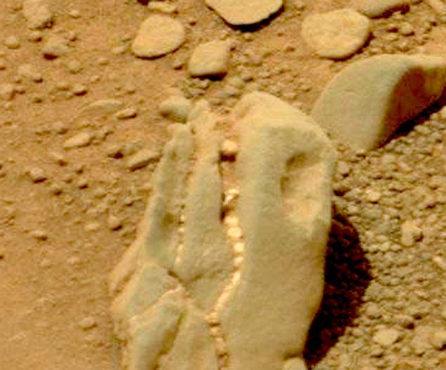 Снимок с Марса, камень, по форме напоминающий голову динозавра