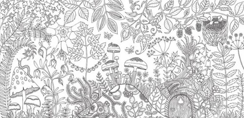 14319260-R3L8T8D-900-coloring-books-for-adults-johanna-basford-5__880