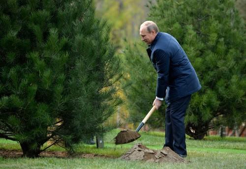 Путин с лопатой