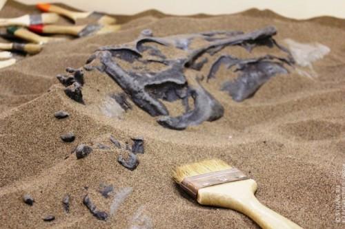 Д3 ост палеонтологи