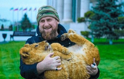 Кадыров и львёнок