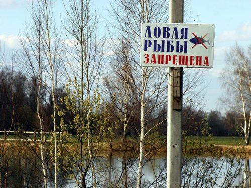 В некоторых местах на Черном и Азовском морях запретили рыбалку